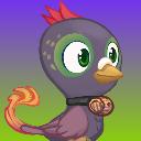 flipperpigeon